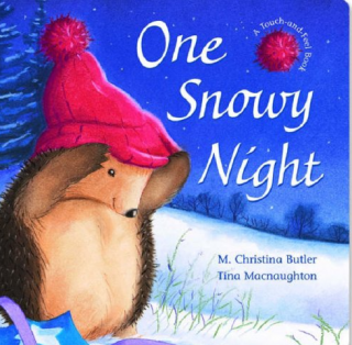 One Snowy Night by M. Christina Butler and Tina McNaughton read by Miss Wood